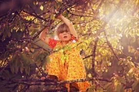girl-tree-climb